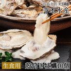 広島牡蠣老舗の味! 殻付き牡蠣10個[生食用]