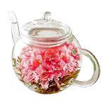 母の日 花 ギフト カーネーション茶 ティーポット お花のつぼみ フラワーセット 花 お茶 花咲くお茶 工芸茶 花茶 中国茶 母の日2021 母の日プ