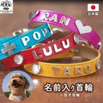 イニシャルスタッズ付小型犬用カラー愛犬名入りオリジナルデザイン犬首輪