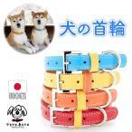 犬の首輪 本格レザーオリジナルの中型犬 小型犬用犬首輪