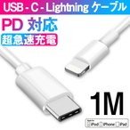 PD充電ケーブル Type-Cケーブル Lightningケーブル USB Type-C to Type-C ケーブル Type-C to Lightning 2.4A 急速充電 PDケーブル 1m