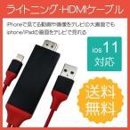 HDMI �Ѵ������ץ� iPhone �ƥ����³�����֥�  ���ޥ۹������Lightning HDMI �饤�ȥ˥� �����֥� HDMIʬ�۴� ������ �����ʥ� iPhone Type-c �б�