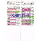 ショッピング 運転士用時刻表(レプリカ) 485系 特急電車 5084M「ひゅうが4号」 485系 特急電車 5017M「にちりん17号」