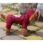 カラフルレインコート/ワインレッド 小型犬用 (M-XLサイズ)【RUISPET ルイスペット】 ワンコ服 犬服 ドッグウェア