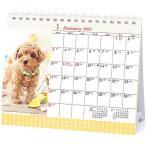 2021年 仔犬(卓上)カレンダー 1000115877 vol.019