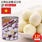 【12缶セット】 【公式】天狗缶詰 うずら卵水煮 ベトナム産 2号缶 個数約50-60個 12缶