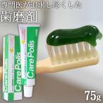 〜歯磨き粉 研磨剤なし〜 ケアポリス75g
