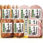 お中元 早割り 夏ギフト 送料無料 ポイント5倍 鎌倉ハム富岡商会 ホットグリルセットギフト KG-502
