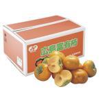お歳暮 送料無料 広島県産(JA福山市) 松永の富有柿 5kg 16から18玉