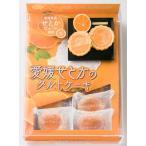 名所堂 愛媛せとかタルトケーキ(大)14個 松山お土産|4909466021528