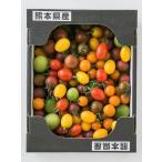 (産地直送)熊本県産カラフルトマトミックス 2kgとまとリコピン(期日指定できません)