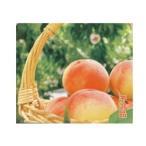 (国産ブルーベリー)愛媛県産 ブルーベリー 100g×10パック フルーツ アントシアニン|15769|