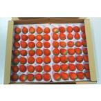 広島県産 高野高原いちご 70粒入り 苺 スイーツ|17379:フルーツ・果物