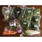 香川県 有機野菜セットB 14098:野菜