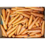 【訳あり】【数量限定】ジュース用 熊本県産 人参 10kg 人参国産|14689:野菜