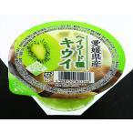 (送料込み) えひめ中央農業協同組合 愛媛県産キウイゼリー 120g×30個 箱売り(期日指定できません)