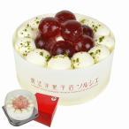 (送料込み) ソルシエ スイーツ デコ ケーキ フルーツ 洋菓子 フルーツジュレ玉デコレーションケーキ 5号