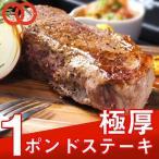 赤身 アンガス牛 ステーキ肉 厚切り 1ポンド 450g 牛肉 お中元 お歳暮
