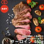 アメリカ産 熟成 サーロイン ステーキ 450g  熟成牛 牛肉 BBQ ステーキ肉 赤身 お中元 お歳暮