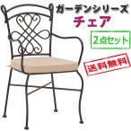 【送料無料】 ガーデンシリーズ チェアー LC-4232 2点セット