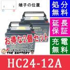 HC24-12A 電動車椅子 バッテリー 日立 サイクルバッテリー 2個セット 互換 SC24-12 SER24-12