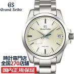グランドセイコー スプリングドライブ 9R メンズ 腕時計SBGA279 チタン シルバー 耐メタルアレルギー 日付機能