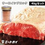 グラスフェッドビーフ サーロインステーキブロック肉 4kg(2kg×2)+ステーキスパイス 120g セット(送料無料)バーベキューセット  BBQ 牛肉 塊肉
