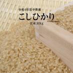 玄米 コシヒカリ 30kg 令和2年度 岩手県産