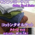 タオルケット クイーン 綿100% コットンタオル モダンカラー5色
