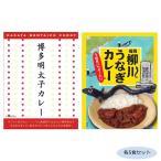 ご当地カレー 福岡博多明太子カレー&柳川うなぎカレー(うなぎパウダー入り) 各5食セット同梱・代引不可