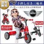 three-stone-ys_bike-teo-mini