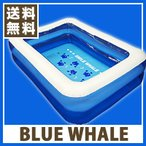 BLUE WHALE POOL  ブルーホエールプール ビニールプール