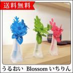 自然気化式 うるおい Blossom いちりん お花 電気を使わないECO加湿器 1000円ポッキリ