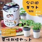 【Ti Amo】父の日ギフト/染付小紋 薬味小鉢栽培セット/写真入りオリジナルメッセージ帯付き 2020