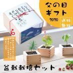 【Ti Amo】父の日ギフト/ソダテマス 盆栽栽培セット/ヒノキ桝/オリジナルメッセージカード付き 2020