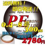強力PEライン300m 0.4号/0.6号/0.8号/1号/1.5号/2号/3号/4号/6号/8号 船釣り ルアー エギング