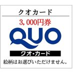 ショッピングチケット クオカードQUO3000円券スタンダード柄(ギフト券・商品券・金券・ポイント)(3万円でさらに送料割引)
