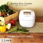 炊飯器 5.5合 炊き 圧力 タイガー魔法瓶 ホワイト