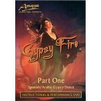 Gypsy Fire / レビューで250円クーポン進呈 ベリーダンス レッスンベリーダンス CD DVD 衣装 チョリ スカート パンツ
