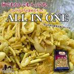 インドのお菓子 オールインワン ALL IN ONE / お菓子エスニック アジア 食品 食材 インスタント スナック ハルディラム ナムキン