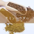 クミンパウダー Cumin クミンシード jeera 1kg インド スパイス カレー アジアン食品 エスニック食材