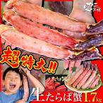 父の日 タラバガニ 超特大ハーフポーション 生 1.7kg かに カニ 蟹 超極太の脚が3-4本入り 国内工場直売