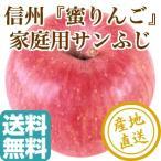 サンふじ りんご フルーツ Fruits ふじりんご 長野県産 家庭用 3kg箱 9〜12個入 産地直送 送料無料