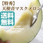 マスクメロン フルーツ Fruits 天使音マスクメロン 静岡県産 送料無料 高級メロン 母の日 父の日 御中元 ギフト