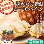 ピーチパイン パイナップル フルーツ Fruits 沖縄県石垣島産 母の日 ギフト 秀品 Sサイズ 3玉 送料無料 産地直送