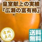 訳あり 柿 フルーツ Fruits 皇室献上ブランド 広瀬の 富有柿 山梨県産 送料無料 4kg箱