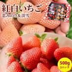 いちご フルーツ fruits 淡雪 恋みのり 紅白イチゴ 詰め合わせ 完熟 2パック入箱 約500g 産地直送 送料無料 熊本県産