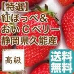 いちご フルーツ Fruits 紅ほっぺ と おいCベリー のいちご詰め合わせ 贈答用2パック入り 約840g 静岡県久能産 産地直送 送料無料