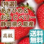 いちご フルーツ Fruits あきひめ と おいCベリー のいちご詰め合わせ 贈答用2パック入り 約840g 静岡県久能産 産地直送 送料無料