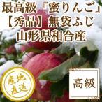 りんご フルーツ Fruits サンふじ 秀品 山形県和合産 蜜りんご 特選10kg箱36〜40個入り 産地直送 送料無料 フルーツギフト